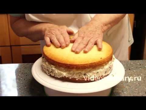 торт настя рецепт с фото