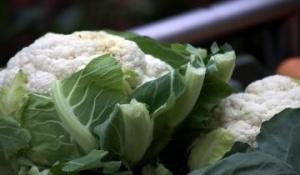 Правила выбора и хранения цветной капусты