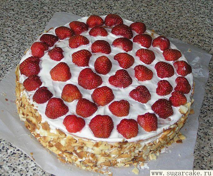 Рецепт торта новинки в домашних условиях с фото пошагово